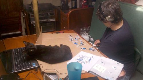 Sparta helping John assemble robot kit he got for Christmas