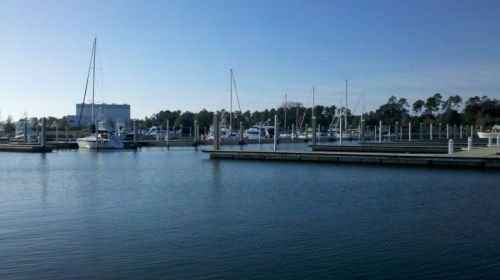 What if you built a marina and nobody came?