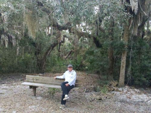 Beautiful nature trail at Cayo Costa