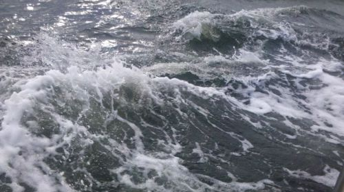 Here's what the water looks like AFTER the dolphin goes away -- I have about a 100 of these pictures