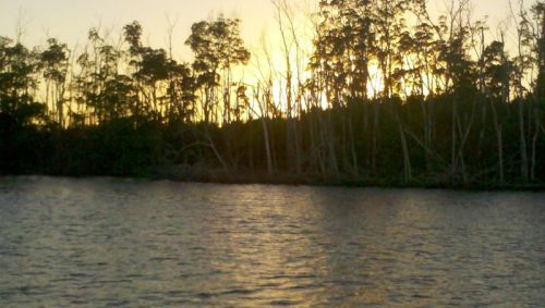 Sunset, Little Shark River, the Everglades