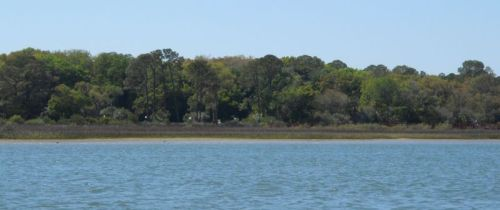 From the time we left this morning to this afternoon, palm trees and mangroves have given way to oaks sassafras.