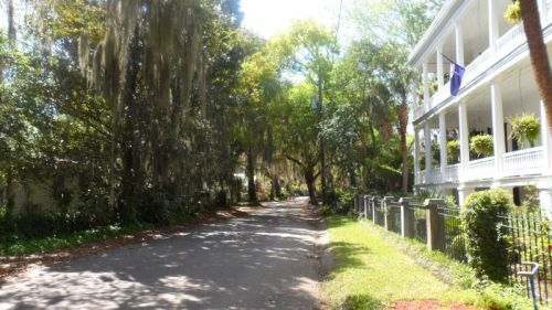 Spanish Moss and old houses -- a perfect combination