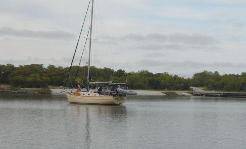 Hammock Bay -- not a grunt in sight.