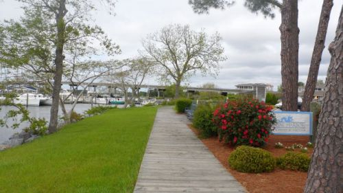 Waterfront Park, Oriental.  We are really chasing Spring up the coast now.