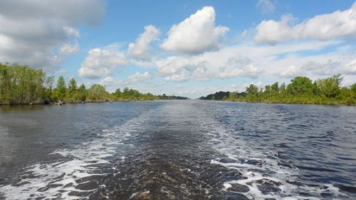 Pungo-Alligator Canal.  Straight as a string.  Once a vital link in Eastern seaboard commerce. now pretty much deserted.